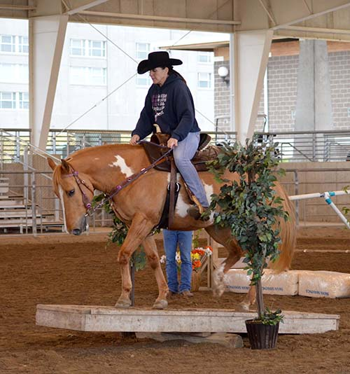2017 Iowa Horse Fair Trail Rider Challenge